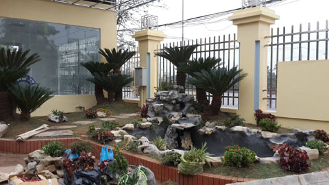 Thiết kế, thi công sân vườn, cảnh quan nội ngoại thất